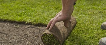 How to Install Sod. 101 Guide