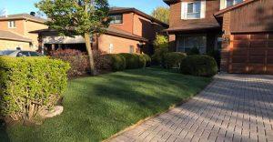 Perfect lawn sodding by sodding Canada