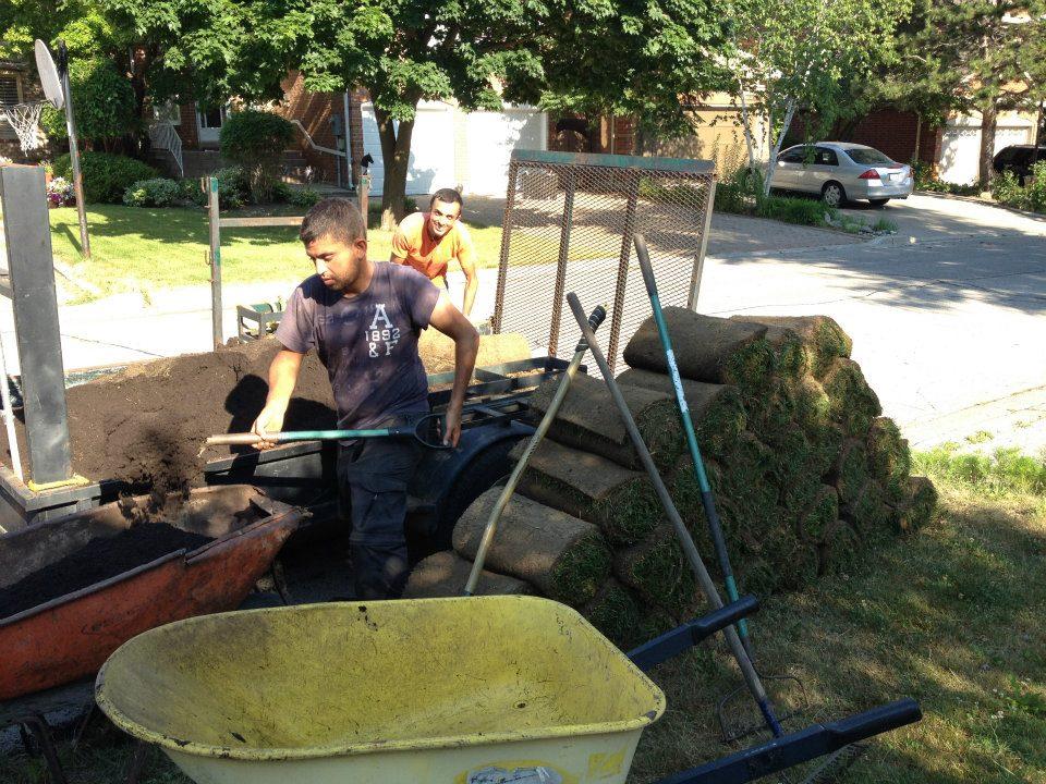 Sodding contractors Toronto