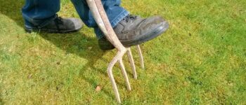 When, Why and How to Aerate Lawn